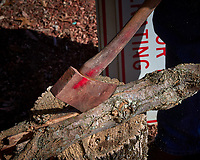 Chopping Wood. Image taken with a Leica T camera and 18-56 mm zoom lens