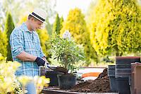 Man planting pot at garden
