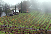 Stony Hill Winery, St. Helena, CA (Napa Valley). Stony Hill Winery is known for producing fine white wines which are aged in oak barrels that have been used for as many as 30 years, thereby not adding much oak flavor at all to the wine..
