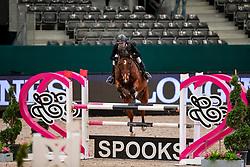 SCHLIECKMANN Roman (GER), Cedric S<br /> Leipzig - Partner Pferd 2019<br /> SPOOKS-Amateur Trophy<br /> Medium Tour<br /> 18. Januar 2019<br /> © www.sportfotos-lafrentz.de/Stefan Lafrentz