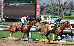 March 30, 2018 - Arcadia, California, USA - Horse Racing -  REVERAND AL [#4] with jockey EVAN A. ROMAN is about to cross the finish line in third place during the 5th race at Santa Anita Race Track, Arcadia, California, USA, March 29, 2018.  TACO TUESDAY [1] with jockey SANTIAGO GONZALEZ fihished in 4th place...Credit Image  cr  Scott Mitchell/ZUMA Press (Credit Image: © Scott Mitchell via ZUMA Wire)