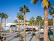 Palm trees in new port development Muelle Uno in Malaga city, Spain