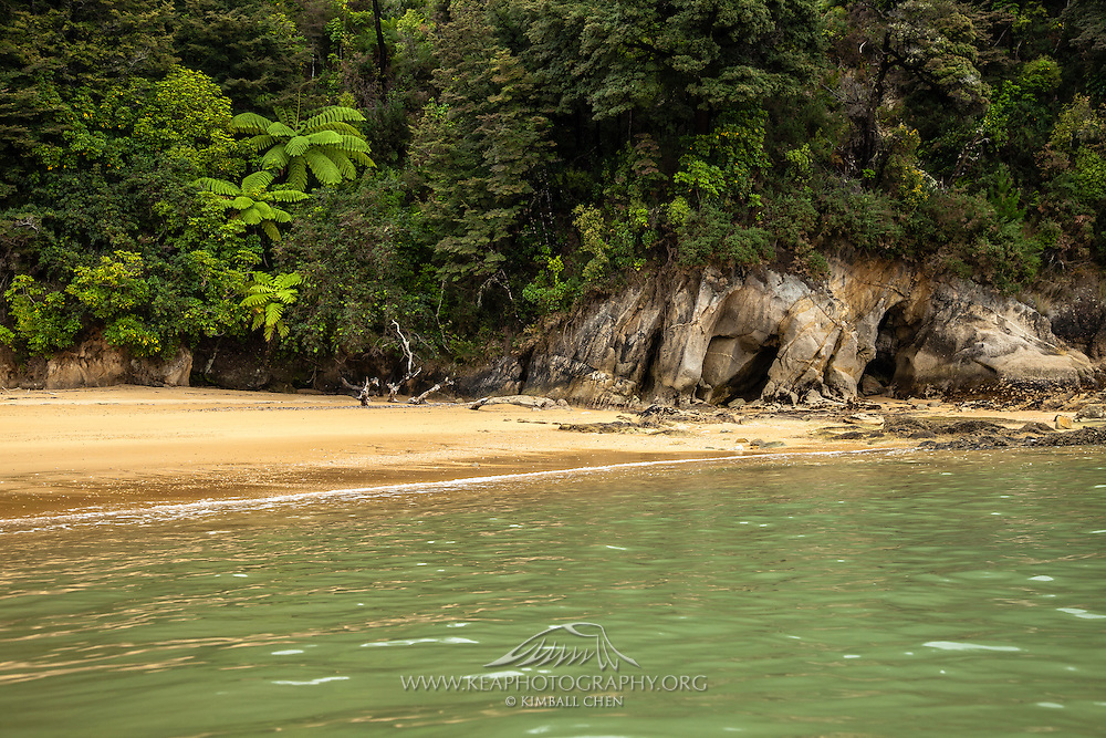 Another pristine beach at Abel Tasman, New Zealand