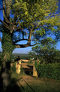 France. Bouches du Rhone.aix en provence    France  / aix en provence    France