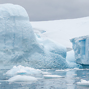 Large icebergs float near the shore of Melchior Island on the Antarctic Peninsula.