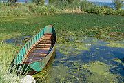 Fishing boat on Erhai Lake, Shuanglang, Yunnan, China