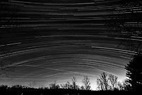 Winter Nighttime Sky Over New Jersey. Composite star trail image 23:08-02:29) taken with a Nikon D810a camera and 19 mm f/4 PC-E lens (ISO 400, 19 mm, f/8, 120 sec). Raw images processed with Capture One Pro and the composite created with Photoshop CC (statistics, maximum). Conversion to B&W with Capture One Pro.