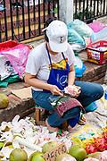 Images from the morning market,  Luang Prabang, Laos.