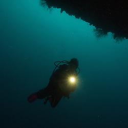 Maldives, Underwater