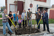 Richmond Trees Group Photo, Richmond, California