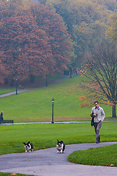 Primrose Hill, London, October 30th. As mist shrouds London's skline, fitness fanatics run and work out on Primrose Hill. Pictured: A dog walker enjoys the quiet early morning on Primrose Hill.