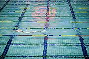 Belo Horizonte_MG, Brasil...Treino da equipe de natacao do Minas Tenis Clube em Belo Horizonte, Minas Gerais..Swimming team training at Minas Tenis Club in Belo Horizonte, Minas Gerais ..Foto: BRUNO MAGALHAES / NITRO