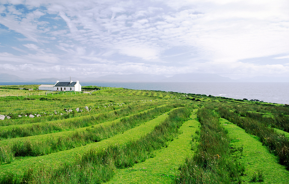 Cottage croft farm showing ridge and furrow cultivation field patterns on Clare Island off  the coast of County Mayo, Ireland.