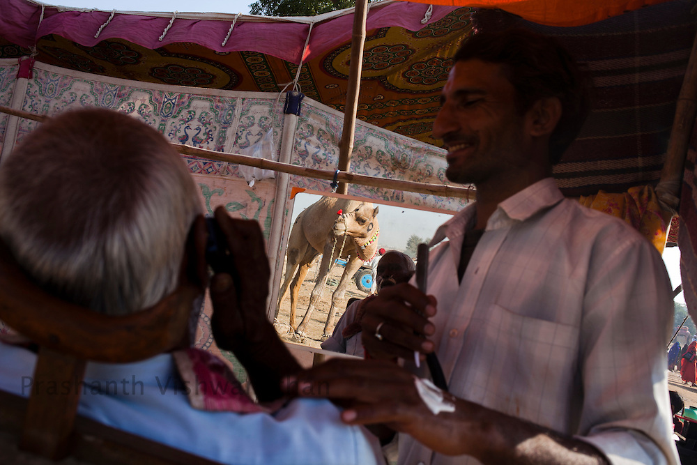 A man gets his shave done as a camel looks on at the fair grounds in Pushkar, India, November 6, 2011.  Photographer: Prashanth Vishwanathan