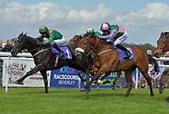 Beverley Races 260418