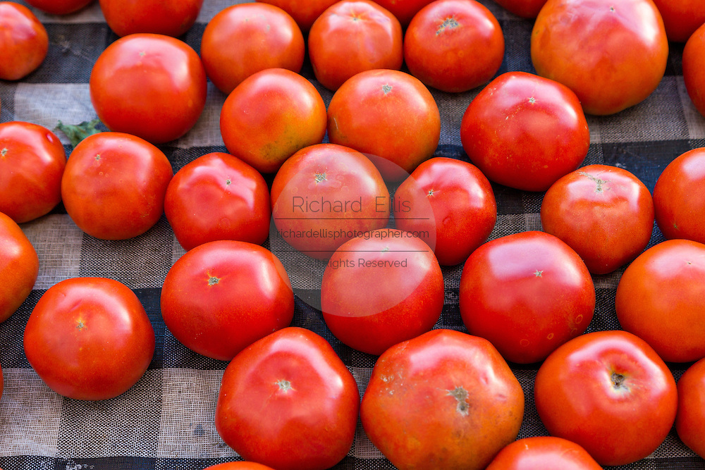 Fresh tomatoes on sale at a farmers market in Wicker Park August 2, 2015 in Chicago, Illinois, USA.