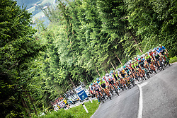 Peloton during 1st Stage of 26th Tour of Slovenia 2019 cycling race between Ljubljana and Rogaska Slatina (171 km), on June 19, 2019 in  Slovenia. Photo by Vid Ponikvar / Sportida