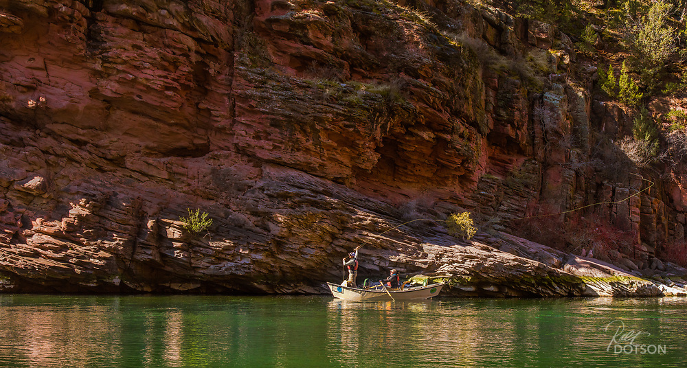 Fly angler, Jordon/Utah Fishchaser, takes some shots along the base of the red rock cliffs on the Green River's A section.
