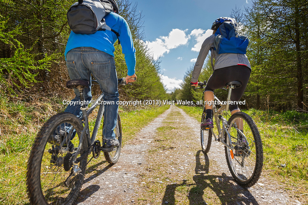 Couple cycling through forest section of Lon Las Cefni at Llyn Cefni<br /> Anglesey<br /> North<br /> Cycling<br /> Activities and Sports