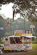 Roadside farm stand selling local produce including Vidalia onions and peaches