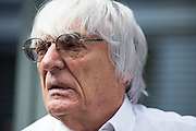 October 8-11, 2015: Russian GP 2015: Bernie Ecclestone