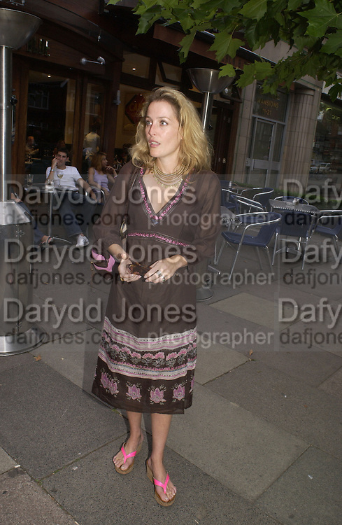 Gillian Anderson. Gala Charity premiere of 'On A Clear Day' in aid of the NSPCC. The Screen on the Hill, Haverstock Hill, London. 31 August 2005. ONE TIME USE ONLY - DO NOT ARCHIVE  © Copyright Photograph by Dafydd Jones 66 Stockwell Park Rd. London SW9 0DA Tel 020 7733 0108 www.dafjones.com