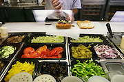 Sandwich preparation at a Subway sandwich shop in Raleigh, North Carolina, USA (From a photographic gallery of images of fast food, in Hungry Planet: What the World Eats, p. 95)