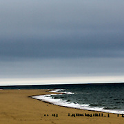 Herring Cove Beach: Provincetown,MA