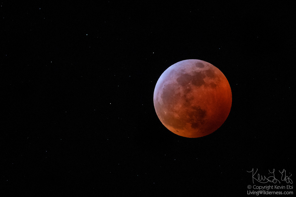 The full moon falls into total eclipse, becoming what is popularly referred to as a blood moon on January 20, 2019. Lunar eclipses occur when the Earth passes between the sun and the moon, blocking direct sunlight from reaching the moon's surface. A small amount of red-orange light, however, bends around the Earth and passes through its atmosphere, a phenomenon known as Rayleigh scattering, causing the moon to glow red during the totality phase of the eclipse.