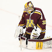 NCAA Hockey: Minnesota vs. Northeastern - 11/29/2014