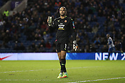 Wolverhampton Wanderers goalkeeper Carl Ikeme (1) during the EFL Sky Bet Championship match between Brighton and Hove Albion and Wolverhampton Wanderers at the American Express Community Stadium, Brighton and Hove, England on 18 October 2016.