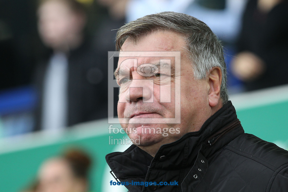 Sam Allardyce manager of Sunderland on the touchline prior to the Barclays Premier League match against Everton at Goodison Park, Liverpool.<br /> Picture by Michael Sedgwick/Focus Images Ltd +44 7900 363072<br /> 01/11/2015