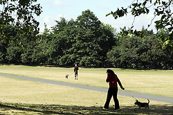 © Licensed to London News Pictures. 18/06/2015<br /> Greenwich Sunny weather in South East London,UK.<br /> Early morning sunny weather in Greenwich Village and Greenwich Park today (18,06,2015)<br /> (Byline:Grant Falvey/LNP)