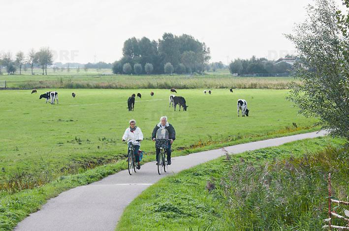 Nederland Delft 17-09-2010 20100917     A4 Delft - Schiedam wordt definitief verlengd,  er  is begin deze maand officieel besloten tot de aanleg van het stuk snelweg waarover zo'n vijftig jaar is gesproken. Natuurgebied dat in de toekomst zal moeten wijken na het doortrekken van de A4. Senioren met kleinkind fietsen op fietspad fietsroute door natuurgebied. oppassen Rijkswaterstaat en het ministerie van VWS hebben dat laten weten.Over de nieuwe verkeersader wordt al decennialang gesteggeld, vooral omdat de weg het natuurgebied Midden-Delfland doorboort...De zeven kilometer asfalt tussen Delft en Schiedam doorkruist straks verdiept of via een tunnel het natuurgebied tussen de twee steden. Het belangrijkste pluspunt is dat de A13 wordt ontlast. Op rijksweg A13 staat dagelijks de voor de economie schadelijkste file van Nederland. Met het project A4 Delft-Schiedam willen lokale en regionale overheden en het Rijk de problemen rond bereikbaarheid en leefbaarheid op en rond de A13 en de A4 Delft-Schiedam oplossen. Midden Delftland. , ruimtelijke, ruimtelijke omgeving, ruimtelijke ordening, Ruimtelijke plannen, ruimtelijke planning, ruimtelijke visie, ruraal, rurale omgeving, rustiek, rustieke, rustieke omgeving, rustig, rustige, senior, senioren, space, spare time, sportief, sportieve, sportive, stedelijke vernieuwing, stil, streekplan, sunny, terrein, The Netherlands Holland Nederland, toekomst, toekomstige plannen, toekomstplannen, tracé, traject, uitgestrektheid, verbinding, verbindingen, vergezicht, vergezichten, verkeer en vervoer, verkeer en waterstaat, verkeersnet, verlengen, vernieuwing, vervoer, vewezenlijken, vitaal, vitale, vitaliteit, vrije tijd, vrouw, vrouwen, wegenbouw, wegenbouwplanologie, wegennet, wegnet, wegverbinding, wei, weide, weidegang, weiland, wijds, wijdsheid