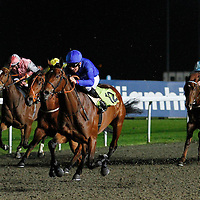 Tumooh and Eddie Ahern winning the 5.20 race
