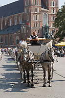 Horse Carriages on the Rynek in Krakow Poland