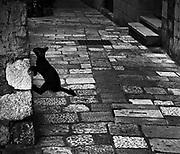 Dubrovnik, 2017.