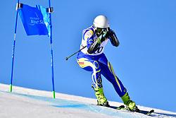 LINDSTROEM Aron, LW6/8-2, SWE, Giant Slalom at the WPAS_2019 Alpine Skiing World Cup, La Molina, Spain