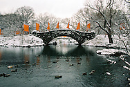 The Gates, bridge and ducks
