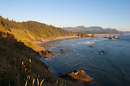 "Views from Ecola State Park.  The first recorded White journey to what is now Cannon Beach was made by William Clark, one of the leaders of the Lewis and Clark Expedition in early 1806. The expedition was wintering at Fort Clatsop, roughly 20 miles to the north near the mouth of the Columbia River. In December 1805, two members of the expedition had returned to camp with blubber from a whale that had beached several miles south, near the mouth of what is now known as Ecola Creek. Knowing that the expedition needed some variety in their monotonous winter diet, Clark decided to journey south from Fort Clatsop over Tillamook Head, which he described in his journal as ""the Steepest worst and highest mountain I ever assended [sic]…"". From a place near the western cliffs of the headland he saw ""…the grandest and most pleasing prospects which my eyes ever surveyed, in front of a boundless Ocean…"" That viewpoint is now called Clark's Point of View and can be accessed by a hiking trail from Indian Beach in Ecola State Park. Haystack Rock and Cannon Beach are visible in the distance."