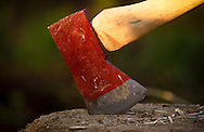 Photo Randy Vanderveen.Grande Prairie, Alberta.An axe rests with the tip of its blade embedded in a chopping block.