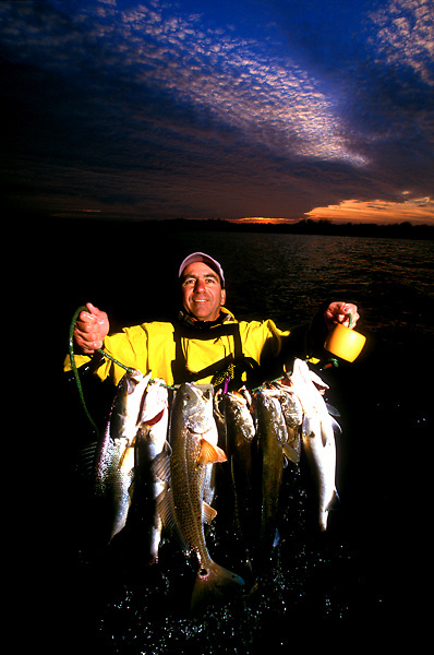 Stock photo of a stringer full of fish and a gorgeous sunset.