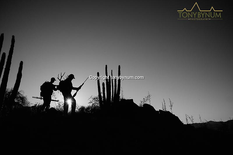 mule deer hunters on a ridge