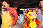 "24 AUGUST 2013 - BANGKOK, THAILAND: A woman selling tiger plush toys uses her mobile phone in Bangkok. Thailand entered a ""technical"" recession this month after the economy shrank by 0.3% in the second quarter of the year. The 0.3% contraction in gross domestic product between April and June followed a previous fall of 1.7% during the first quarter of 2013. The contraction is being blamed on a drop in demand for exports, a drop in domestic demand and a loss of consumer confidence. At the same time, the value of the Thai Baht against the US Dollar has dropped significantly, from a high of about 28Baht to $1 in April to 32THB to 1USD in August.     PHOTO BY JACK KURTZ"