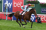HERE AND NOW (11) ridden by jockey Harry Bentley and trained by Ralph Beckett wins The Sky Bet Stakes over 2m (£70,000) ring the Yorkshire Ebor Festival at York Racecourse, York, United Kingdom on 22 August 2018. Picture by Mick Atkins.