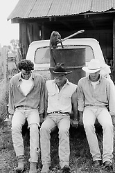 Three men in western clothing pushing an old pick up truck