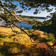 Heather Goodrich rides coastal singletrack on her mountain bike in late afternoon light near Anacortes, Washington.