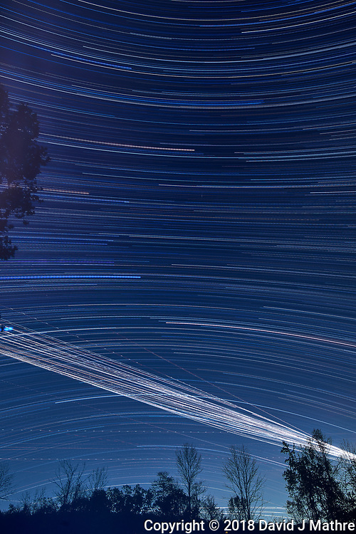 Star trails 20:05-03:20. Composite of images taken with a Nikon D810a camera and 19 mm PC-E lens (ISO 200, 19 mm, f/5.6, 120 sec)