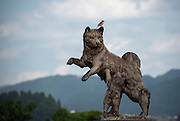 Photo shows one of the statues dedicated to the Akita Inu in Odate City, Akita Prefecture Japan. The dog was formerly known as the Odate Inu. Photographer: Rob Gilhooly