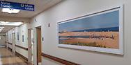 Art Work Peconic Bay Medical Center